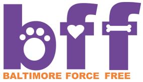 logo trimmed orange